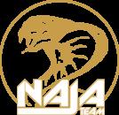 Logo et Icone NajaTeam - Blanc