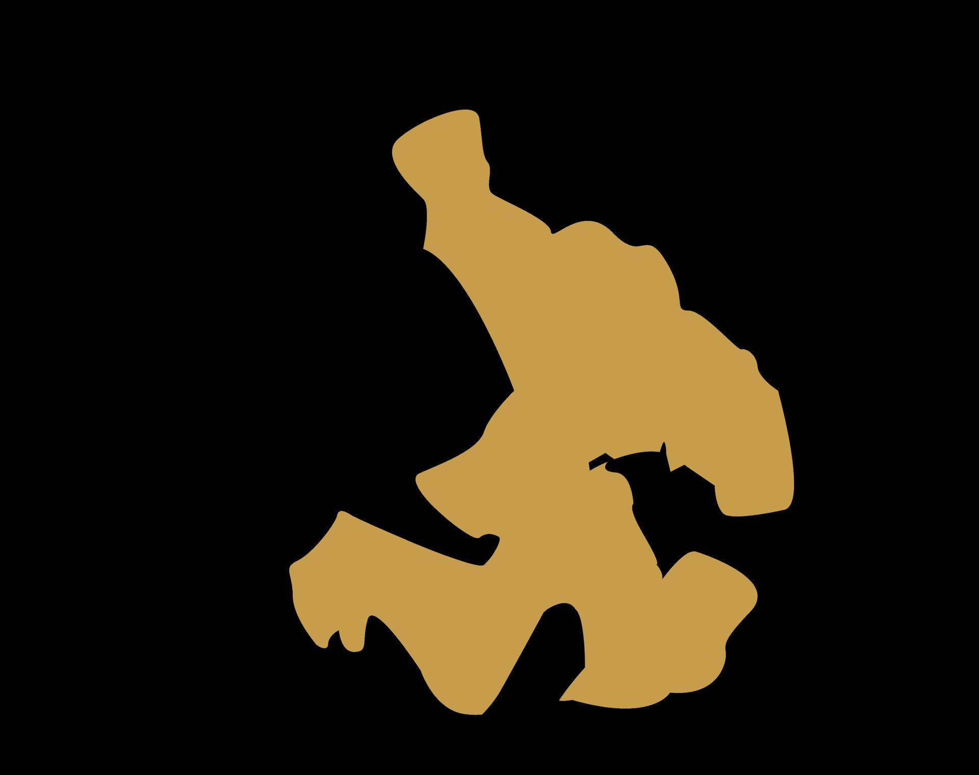 Icon Jiu Jitsu Brésilien/Grappling - Naja Team