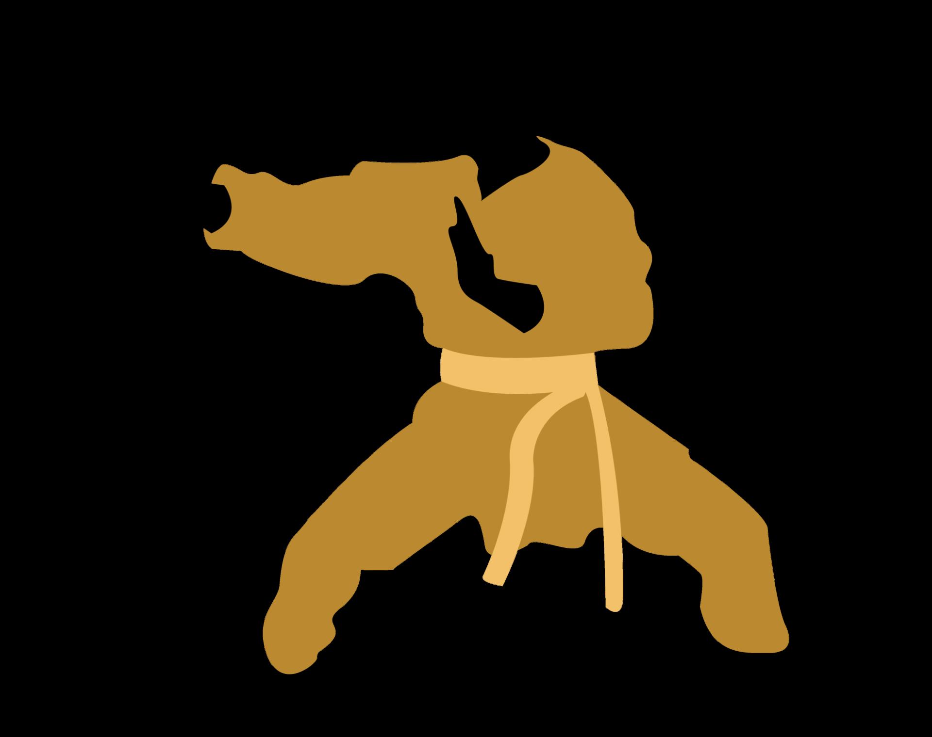 Icon Karaté - Naja Team