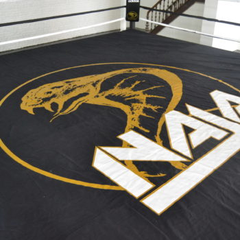 Ring de Boxe - Naja Team